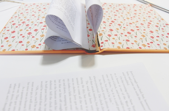 Maegan-Johnson-Original-DIY-Book-Mobile-Boho,-Retro,-Cowgirl,-Prairie,-Tools,-Items-Needed,-Black-Beauty,-Wedding-Book-Mobile,-Teen-Book-Mobile-13